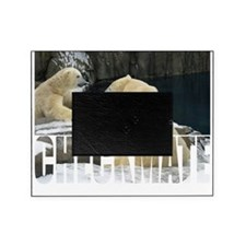 polar game Picture Frame