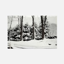 Winter Sentinels Note Cards Rectangle Magnet