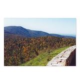 Shenandoah national park Postcards