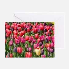 Colorful spring tulips Greeting Card