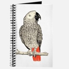 African Grey in Pencil Journal