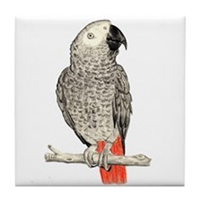 African Grey in Pencil Tile Coaster