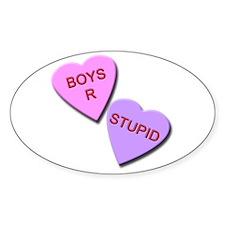 Boys R Stupid Decal