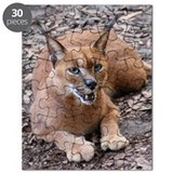 Caracal Puzzles