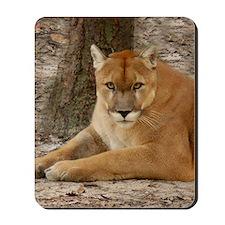 Cougar 003 Mousepad