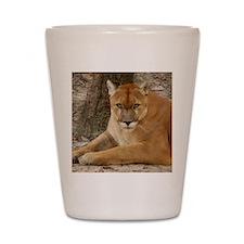 Cougar 003 Shot Glass