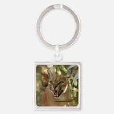 CaracalBCR060 Square Keychain