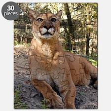 Cougar 009 Puzzle