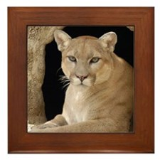 Cougar 014 Framed Tile