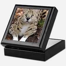 serval 003 Keepsake Box