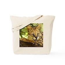 serval 010 Tote Bag