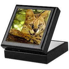 serval 010 Keepsake Box