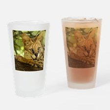 serval 010 Drinking Glass
