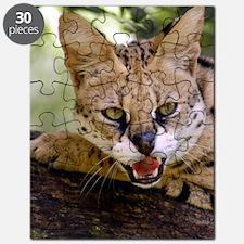 serval 013 Puzzle