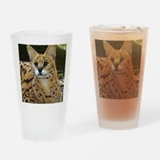 serval 015 Drinking Glass