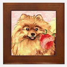 Pomeranian Rose Framed Tile