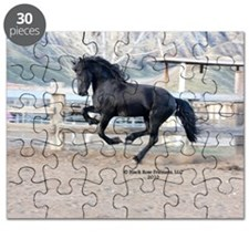 P1280399 Puzzle
