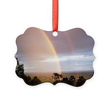 2 rainbows Ornament