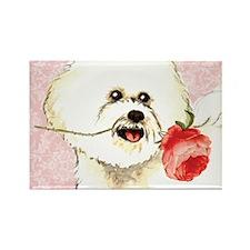 Bichon Rose Rectangle Magnet