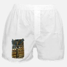 (16) Rope  Pulleys Boxer Shorts