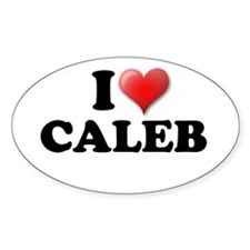 I LOVE CALEB T-SHIRT CALEB SH Oval Decal