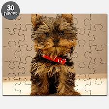 Yorkshire2 16x16 Puzzle