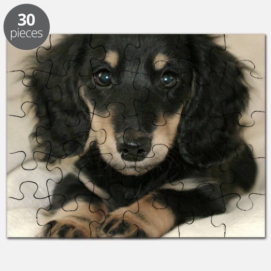 long hair black doxie 16x16 Puzzle