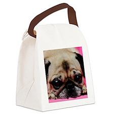 2-DSC_4853 Canvas Lunch Bag