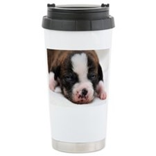 DSC_5385 Travel Mug