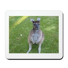 Baby Kangaroo Mousepad