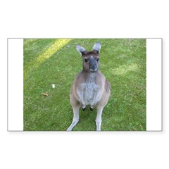 Baby Kangaroo Rectangle Decal