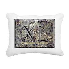 40EXCEL Rectangular Canvas Pillow