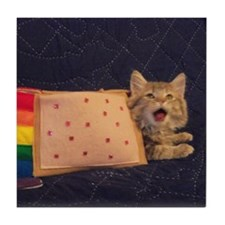 IRL Nyan Pop-Tart Cat  Tile Coaster