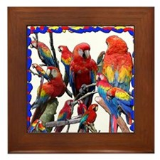 Macaw Mosaic Framed Tile