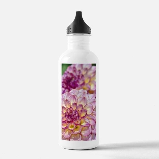 Beautiful pink dahlia  Water Bottle
