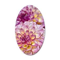 Beautiful pink dahlia flower Wall Decal