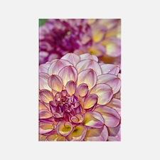 Beautiful pink dahlia flowers Rectangle Magnet