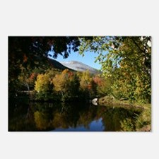 Whiteface P mini poster Postcards (Package of 8)