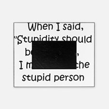 stupidity Picture Frame