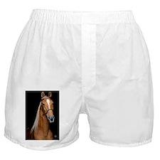 sorrel_journal Boxer Shorts