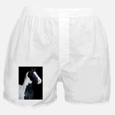 spotted_lp Boxer Shorts