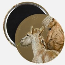 fjordfoalround Magnet