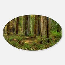 redwoods Decal