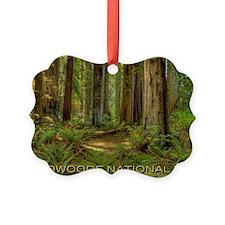 redwoods Ornament