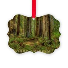redwoods Picture Ornament