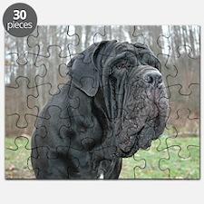 PugsNovember Puzzle