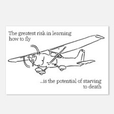 Flying Risk 2 Postcards (Package of 8)