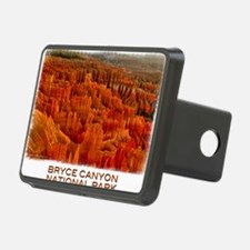 Bryce2 Hitch Cover
