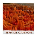 Bryce canyon national park Drink Coasters
