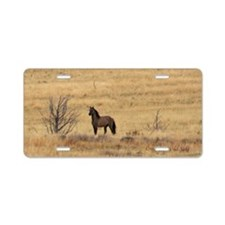 Kiger Stallion Aluminum License Plate